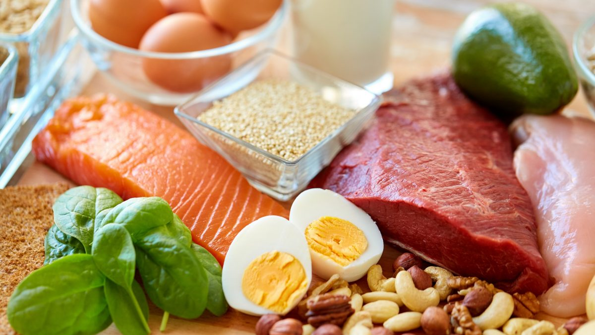 PROTEIN BIOAVAILABILTY
